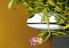 internet-of-things-plantenmeter